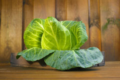 Single head of fresh green pointed sweetheart cabbage Stock Photo