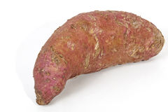 Single Healthy Sweet Potato with Rough Skin Royalty Free Stock Images