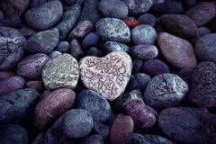 Single  heart on black pebble stones Stock Image