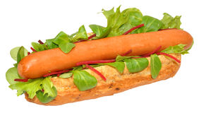 A Single Hot Dog Stock Images