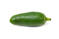 Single Hot Green Pepper. Royalty Free Stock Photo
