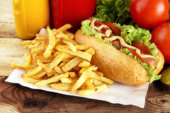 Single hotdog with french fries on tray on plank Royalty Free Stock Image