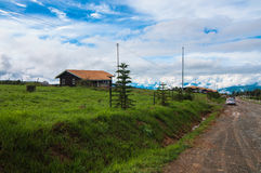 Single house at dairy farms. This view taken from dairy farm near kundasang area Stock Photo