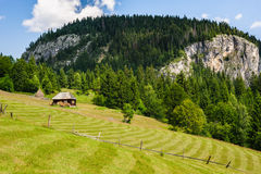 Single house on a meadow in mountains Stock Photos