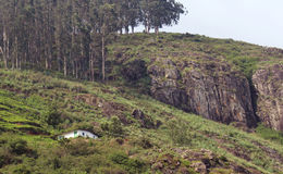 A single house on a moutain. Near ooty hill,tamilnadu, india Royalty Free Stock Photography