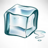 Single ice cube Royalty Free Stock Photos