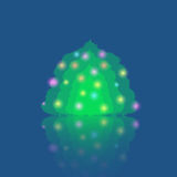 Single Illuminated Christmas Tree Royalty Free Stock Photography