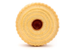 Single jam filled biscuit over white Royalty Free Stock Photography