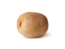 Single Of Juicy Kiwi Fruit Royalty Free Stock Images