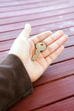 Single key in palm Stock Photography