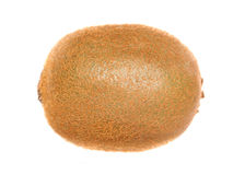 Single kiwi fruit. Studio cutout Stock Images