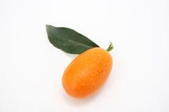 Single kumquat. Isolated on a white background Royalty Free Stock Photos