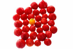 Single Kumquat In A Crowd Of Strawberry Fruits Stock Images