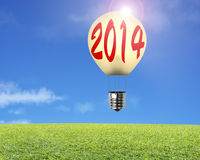 Single lamp balloon with 2014 word on it, meadow, sky Royalty Free Stock Image