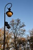 Single lamp next to the almost naked trees Royalty Free Stock Images