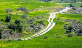 Single lane country road  through a green field Royalty Free Stock Image