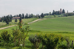 Single Lane Road in Siena Province (Tuscany, Italy). View of the path in a green valley in Tuscany (Italy Royalty Free Stock Photography