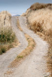 Single lane straight rural country road Stock Photography