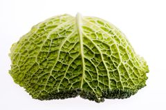 Single leaf of young green brassica isolated on white background close up Stock Photo