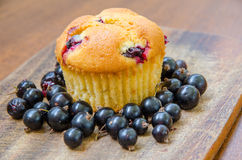 A single lemon muffin with cherries and blackcurrant. A single lemon cherry muffin surrounded by blackcurrant on a wooden table Stock Photography