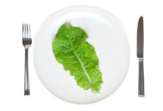 Single lettuce leaf on a plate. Extreme dieting, isolated Royalty Free Stock Photo