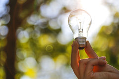 The single light bulb on the hand. Stock Image