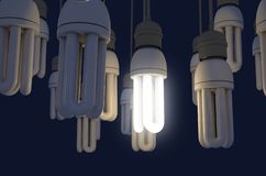 Single Light Bulb Illuminated In Collection. A collection of hanging fluorescent light bulbs with a single one illuminated - 3D render royalty free illustration