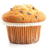 Single light chocolate chip muffin in wax liner on white Royalty Free Stock Image