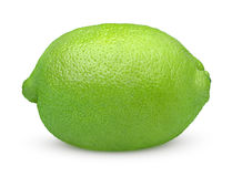 Single lime fruit Stock Photography