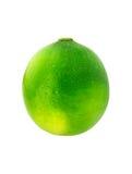 Single Lime Isolated On White Background. Royalty Free Stock Image
