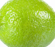 Single lime Stock Photos