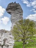 Single limestone rock, landscape Stock Images