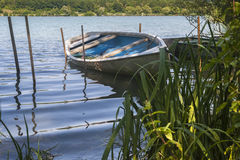 Single little boat with reeds. Single little boat floating beetween some rods and reed in the foreground on a lake Royalty Free Stock Image