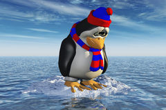 Single Lonely Penguin On A Little Piece Of Ice Royalty Free Stock Photo