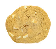 Single macadamia cookie Royalty Free Stock Photos