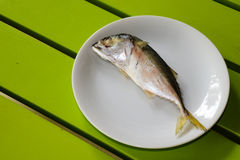 Single mackerel Royalty Free Stock Photography