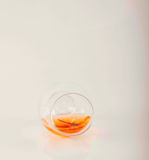 Single malt tasting glass with scorpion, single malt whisky in a Stock Photography
