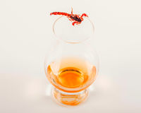 Single malt tasting glass with scorpion, single malt whisky in a Stock Photo
