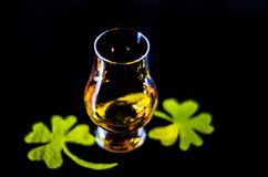 Single malt whiskey in a glass of tasting with decoration for St. Patrick`s day, green clover symbol for Irish holiday, festive Royalty Free Stock Image