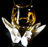 Single malt whiskey in a glass of tasting with napkin bunny, fes. Tive Easter decoration, holiday Royalty Free Stock Photos