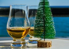 Single malt whisky  in the glass with decorative Christmas tree, Stock Images