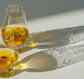 Single malt whisky  in the glass, luxurious tasting glass Royalty Free Stock Photo