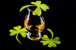 Single malt whisky in a glass of tasting with decoration for St. Patrick`s day, green clover symbol for Irish holiday, festive royalty free stock photo