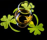 Single malt whisky in a glass of tasting with decoration for St. Patrick`s day, green clover symbol for Irish holiday, festive royalty free stock photos