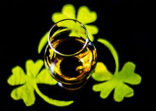 Single malt whisky in a glass of tasting with decoration for St. Patrick`s day, green clover symbol for Irish holiday, festive royalty free stock image