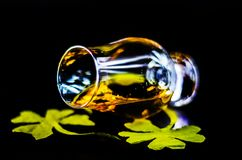 Single malt whisky in a glass of tasting with decoration for St. Patrick`s day, green clover symbol for Irish holiday, festive stock image