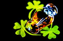 Single malt whisky in a glass of tasting with decoration for St. Patrick`s day, green clover symbol for Irish holiday, festive royalty free stock images