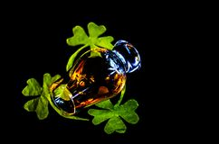 Single malt whisky in a glass of tasting with decoration for St. Patrick`s day, green clover symbol for Irish holiday, festive stock photo