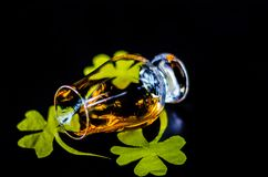 Single malt whisky in a glass of tasting with decoration for St. Patrick`s day, green clover symbol for Irish holiday, festive royalty free stock photography