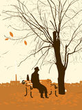 Single man. With a cat in the autumn tree in the park Royalty Free Stock Images